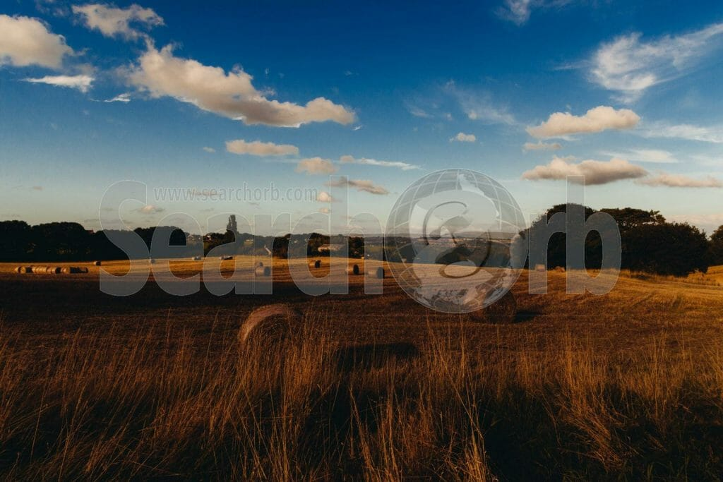 hay field for searchorb marketing free image page